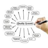 Beståndsdel för kvinnahandhandstil av det kvalitets- systemet för bruk i tillverkning och affärsidé Arkivbild