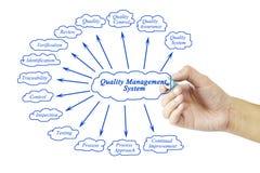 Beståndsdel för kvinnahandhandstil av systemet för kvalitets- ledning för busi Royaltyfria Foton