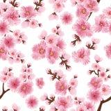 Beståndsdel för modell för vektorsakura blomma sömlös Elegant textur för körsbärsröd blomning för bakgrunder royaltyfri illustrationer