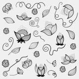 Beståndsdelar för handdrowdesign blommar - vektoruppsättningen Arkivbilder
