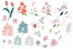 Beståndsdelar för stor uppsättning för vektor botaniska - vildblommor, örter, blad trädgårds- och lös lövverk för samling, blommo stock illustrationer