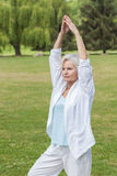 Best ager women practising yoga ant tai chi Stock Photo