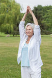 Best ager women practising yoga ant tai chi Royalty Free Stock Photo