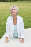 Best ager women practising yoga ant tai chi Royalty Free Stock Image