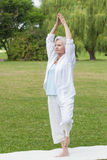 Best ager women practising yoga ant tai chi Royalty Free Stock Photography