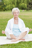 Best ager women practising yoga ant tai chi Royalty Free Stock Images