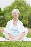 Best ager women practising yoga ant tai chi Stock Image