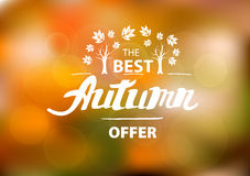 The best autumn offer - hand drawn lettering Stock Photo