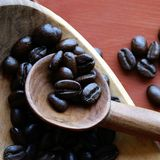 Only the Best Beans. Fair Trade Coffee Beans about to be ground for a morning cup of Java Royalty Free Stock Photos