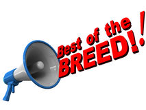 Best of breed Royalty Free Stock Images
