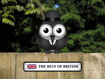 Best of British Stock Photo