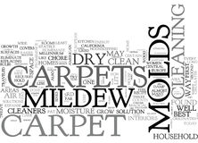 Best Carpet Cleaners Advice Keep Dry Bid Molds Goodbye Word Cloud Royalty Free Stock Images
