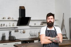 Best chef ever. bearded man hipster in kitchen. brutal man in cook apron. mature male with beard cooking. culinary royalty free stock photography