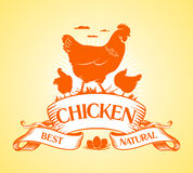 Best chicken design. Royalty Free Stock Image