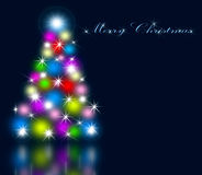 The best Christmas tree background with reflection Stock Image