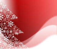 The best Christmas tree background with reflection Royalty Free Stock Photography