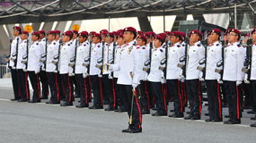 Best combat unit standing at attention Royalty Free Stock Images