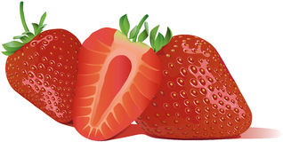 Best custom vector online Sweet strawberry Stock Photography