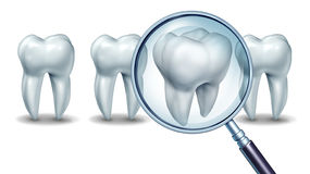 Best Dental Care Stock Photography