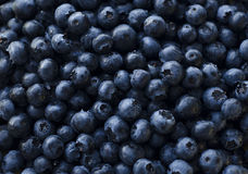 Best dessert - summer berries. Blueberry is very useful and Royalty Free Stock Photography