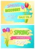 Best Discount 30 Off Advertisement Sticker Sale. Best spring discount 15 50 off advertisement stickers colorful bouquet with three tulips promo emblems color vector illustration