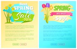 Best Discount 70 50 Off Sdvertisement Stickers. Best discount 70 50 off advertisement sticker colorful bouquet with three tulips and bouquet of daffodils vector stock illustration