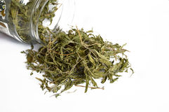 The best dried thyme fresh pictures stock photos
