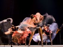 The Best Flamenco Dance Drama Royalty Free Stock Image