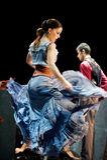 The Best Flamenco Dance Drama : Carmen Royalty Free Stock Images