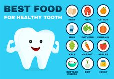 Best food for healthy tooth. Strong tooth vector illustration