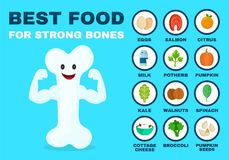 Best food for strong bones. Strong healthy. Bone character. Vector flat cartoon illustration icon. Isolated on blue backgound. Health food, diet, products Stock Images