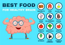 Best food for strong brain. Strong healthy. Brain character. Vector flat cartoon illustration icon. Isolated on white backgound. Health food, diet, products vector illustration