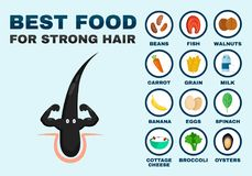 Best food for strong hair. Strong healthy vector illustration