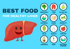 Best food for strong liver. Strong healthy stock illustration
