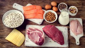Best Foods High in Protein Stock Images