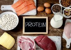 Best Foods High in Protein. On wooden background. Healthy eating and diet concept stock photos