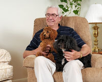 Best Friends. Portrait of an elderly man and his two dogs in their livingroom Stock Photography