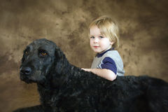 Best Friends. Boy and His LaborDoodle DOg stock images