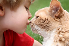 Best friends royalty free stock photography