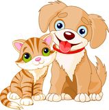 Best friends ever. Cute Puppy and Kitten Best Friends Ever Royalty Free Stock Photography