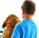 Best Friends Forever. Back shot of a pet dog, the golden retriever Amy and her bestfriend, a seven year old boy in aquablue Tshirt. Both enjoy watching passersby Royalty Free Stock Photo