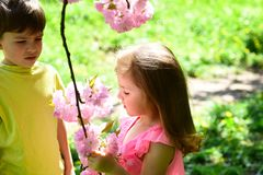 Best friends, friendship and family. childhood first love. small girl and boy relations. summer couple of little. Children. face skincare. allergy to flowers stock images