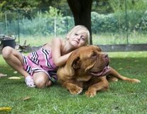 Best friends girl and dog Stock Images