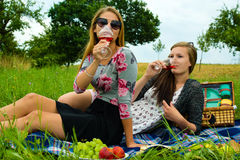 Best friends having a picnic Stock Images