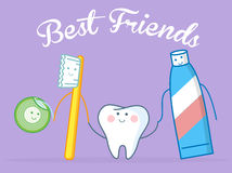 Best Friends Of Healthy Tooth Royalty Free Stock Photos