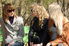 Best friends relaxing in park. Women friends relaxing and talking in a city park Stock Photography