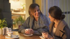 Best friends sharing child memories in cafe, laughing and drinking hot coffee. Stock footage stock footage