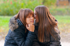 Best friends sharing secrets. And news in the park on beautiful autumn day Stock Photography