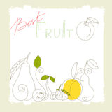 Best fruit. Universal template for greeting card, web page, background Royalty Free Stock Image
