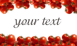 The best grades a tomato Stock Photography